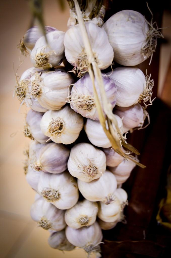 garlic-428116_1920