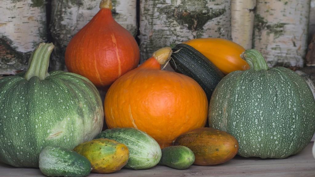 vegetables-943368_1920