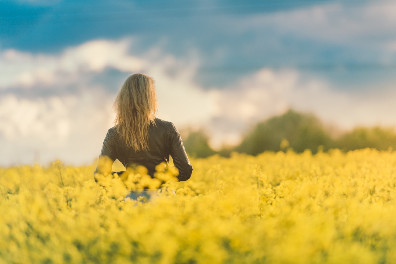 Girl Standing In Field Of Flowers At Sunset