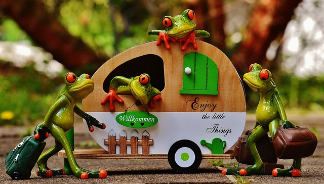 frogs-1358820_640