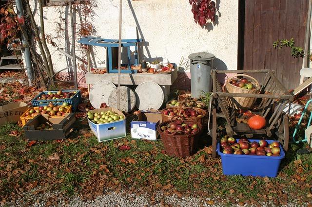 fruit-215183_640