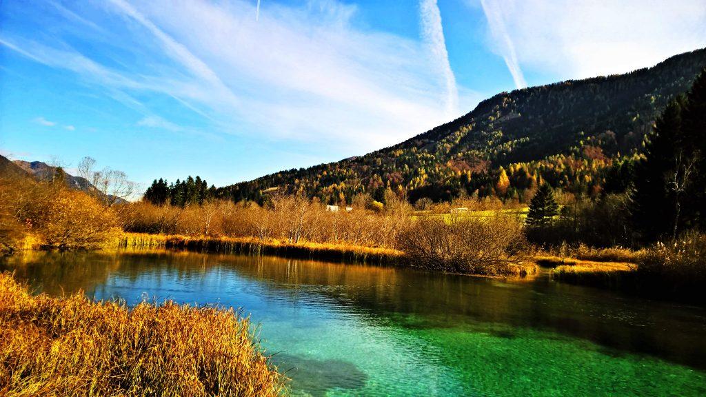 Prirodni rezervat Zelenci, izvorište reke Save Privatna arhiva