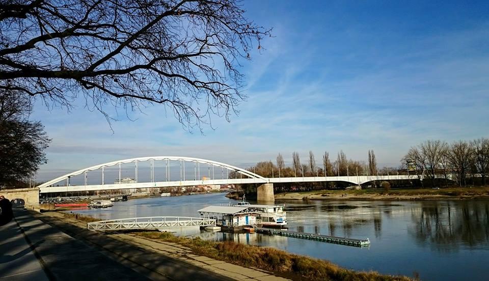 Sunčani decembarski dan na Tisi, kao na nekoj zaboravljenoj slici holandskih majstora 17. veka.