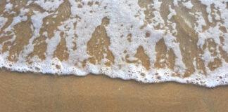Background photo created by rawpixel.com - www.freepik.com